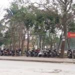Dịch vụ taxi tải chuyên nghiệp phường Hoàng Liệt