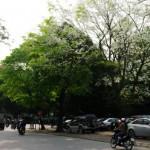 Dịch vụ taxi tải giá rẻ tại phố Dịch Vọng